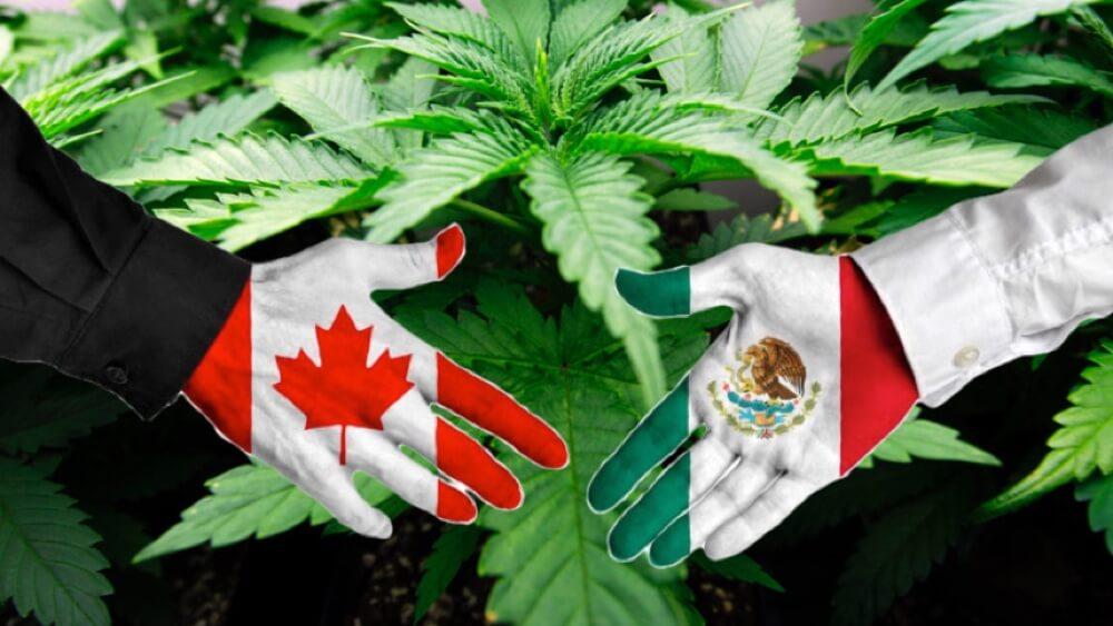 History of Marijuana in México