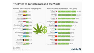 Report Predicts $13 Billion Latin American Cannabis Market by 2028