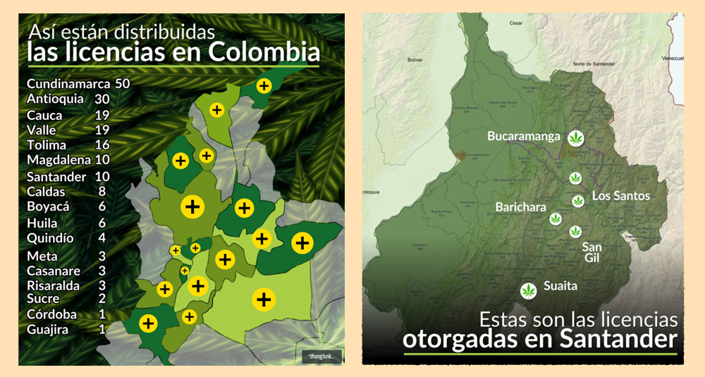 The business of medical marijuana in Colombia. Who's behind it?